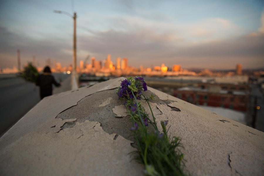 http://www.heathermobrien.com/files/gimgs/th-62_62_where-larkspur-once-grew-freely-a-funeral-for-the-6th-street-viaduct-4.jpg