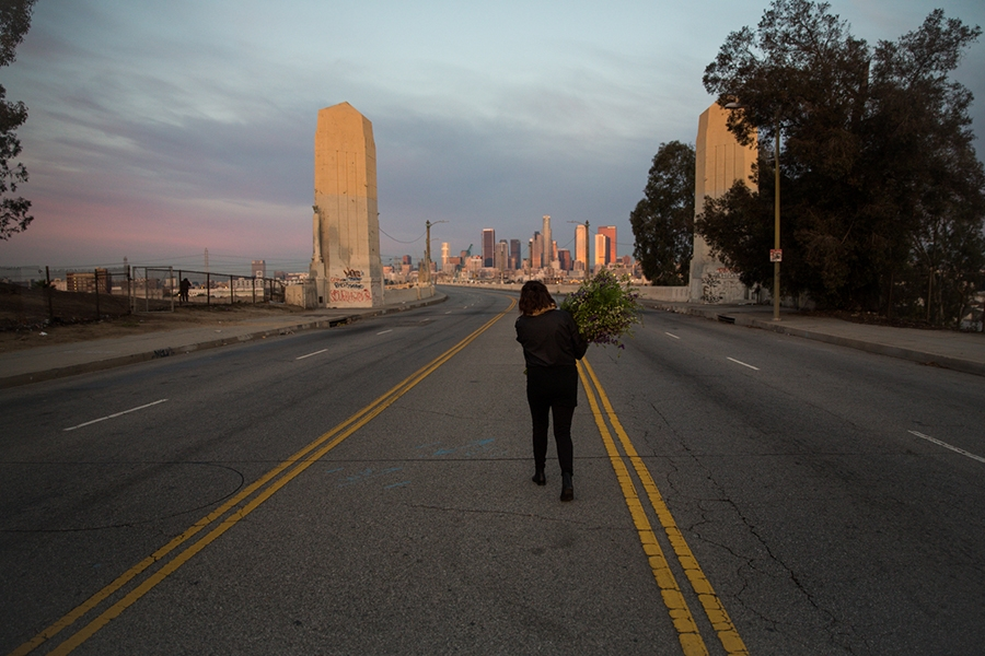 http://www.heathermobrien.com/files/gimgs/th-62_62_where-larkspur-once-grew-freely-a-funeral-for-the-6th-street-viaduct.jpg